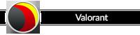 desbl_adminsignatur_valorant_pc.png